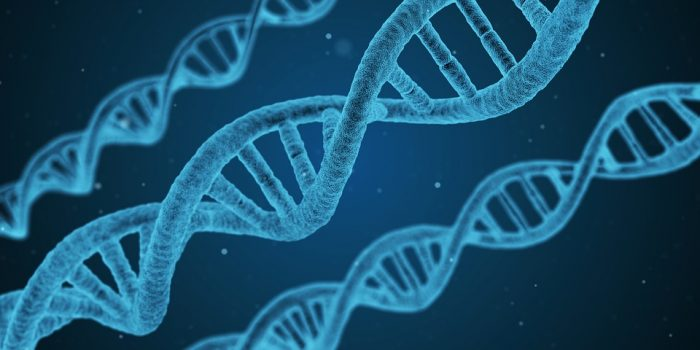 Heredity and Genetic Causes