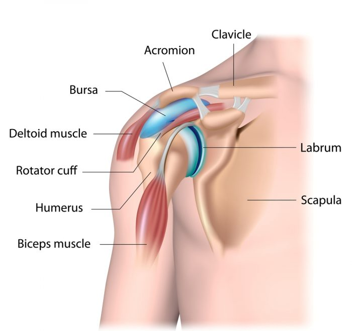 rotator-cuff-tear-shoulder-pain