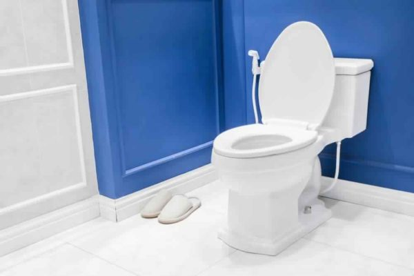 Keep Your Toilet Clean
