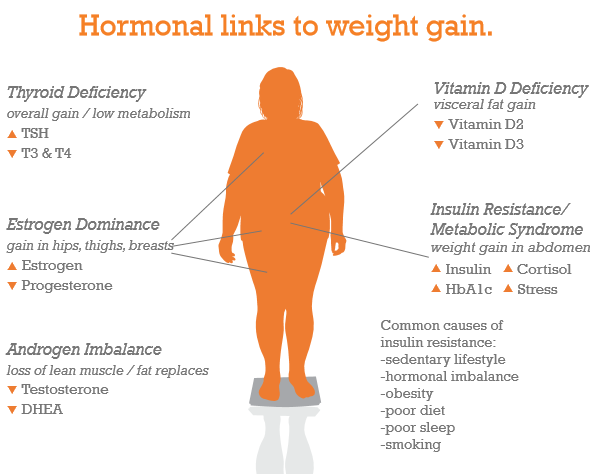 hormones for weight gain