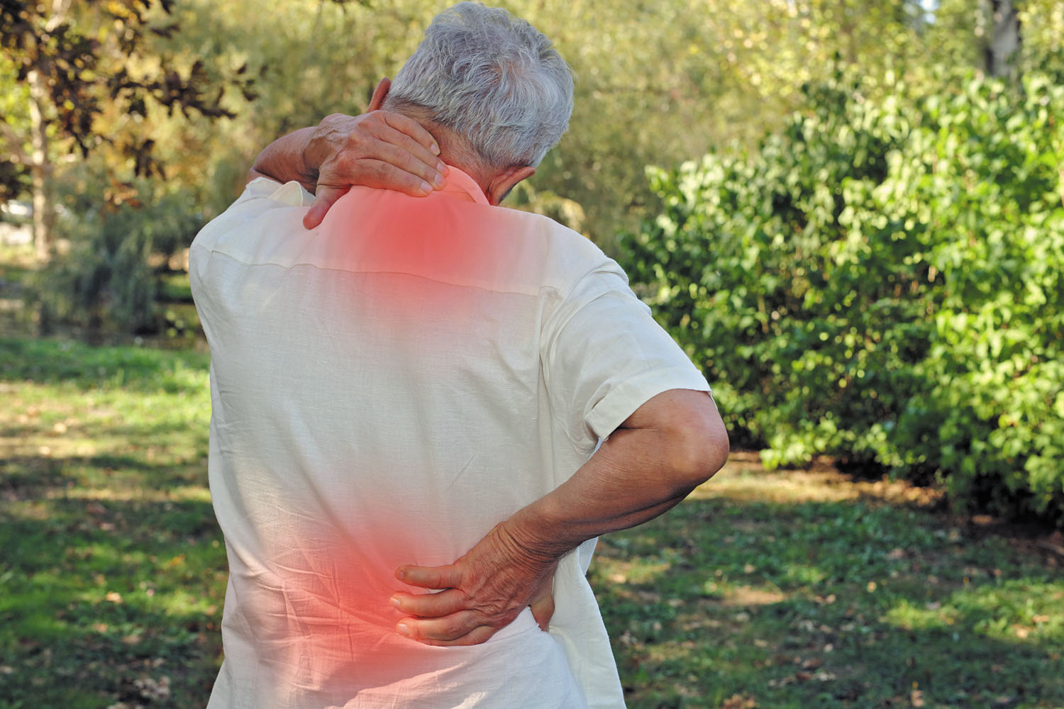 Relieve Spinal Damage linked with age