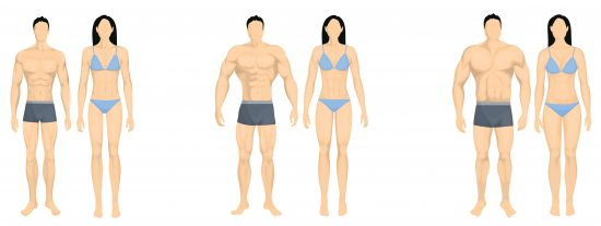 Your Body Type