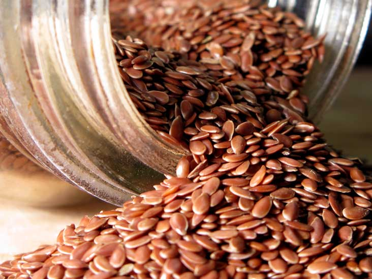 flax seeds NUTRITION INFORMATION
