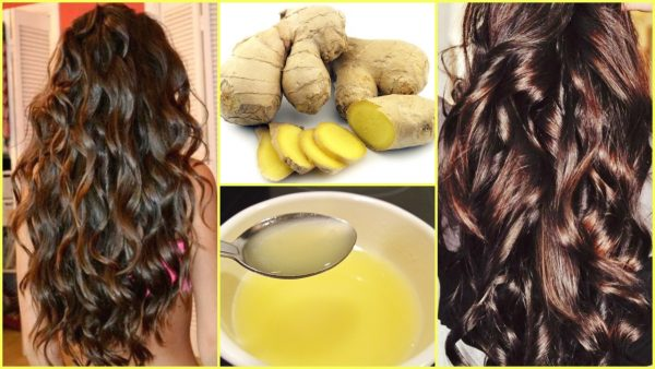 Ginger Benefits For Hair