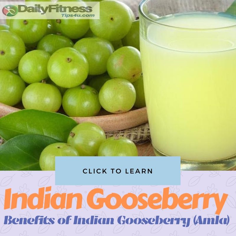 Benefits of Eating Indian Gooseberry