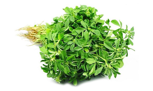 How Much Fenugreek Enough In A Day