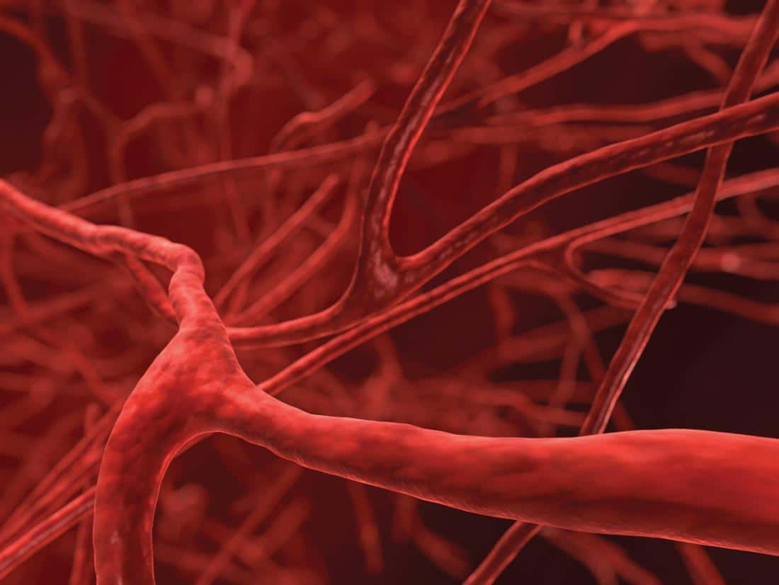 Healthy Blood Vessels